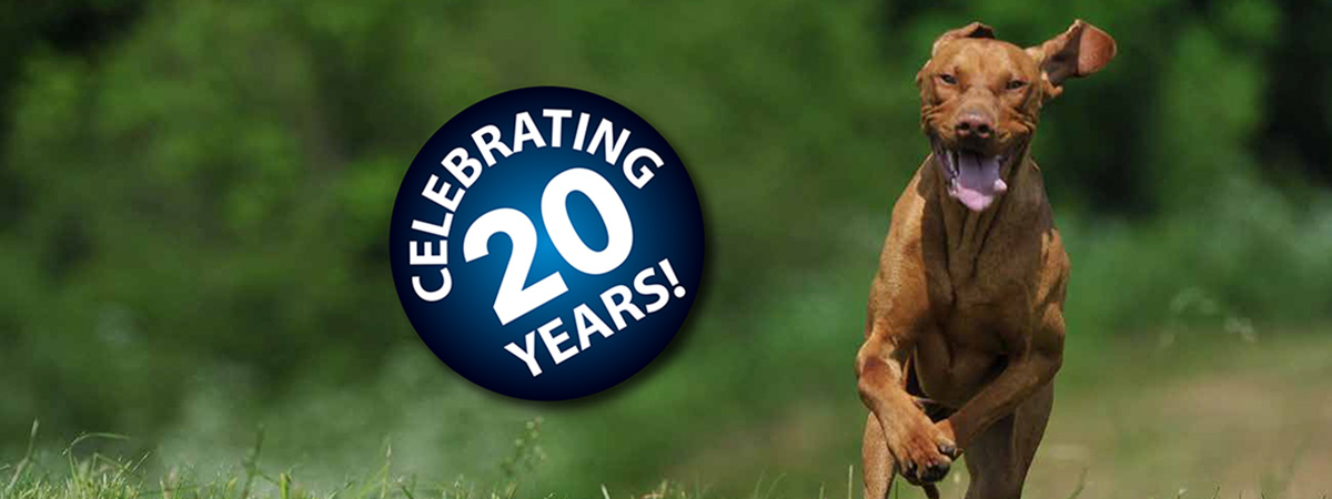 Celebrating 20 years badge with a dog running in the background