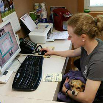 a woman holding a dog in her arms and working at the computer